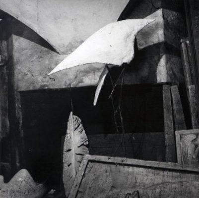 """Joan Fontcuberta, """"L'Ange Déchu"""", 1980 cm 35,7×35,7"""